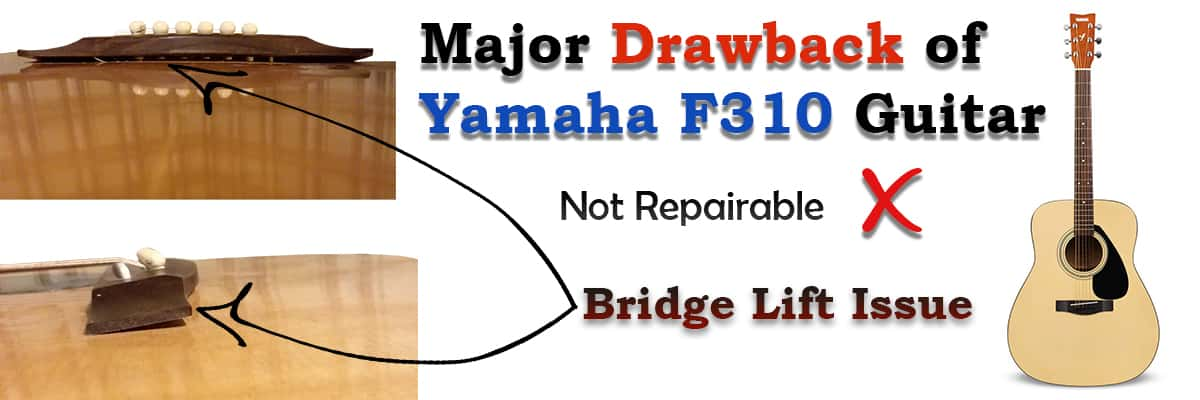 Drawbacks of Yamaha F310 Guitar Review Latest 2021