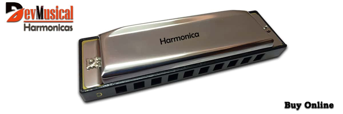 Best harmonicas to buy in India 2021