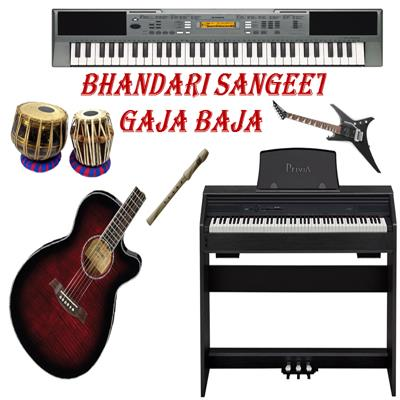 Best Musical Instruments Supplier in India