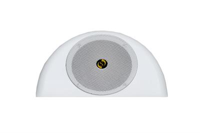 Studiomaster ARC 06 Ceiling Speakers