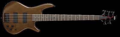 Ibanez GSR205B Bass Guitar