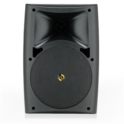 Studiomaster ARC 40 Ceiling Speakers