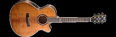 Cort SFX10 Electro Acoustic Guitar