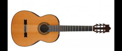 Ibanez G500-NT Acoustic Guitar