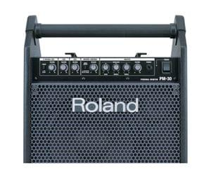 Roland Pm 30 Personal Monitor Amplifier