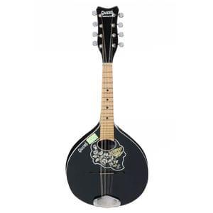 Rose Wood Mandolin Bridge,Chrome Plated Tailpiece Mandolin Set,Coated Wire Mandolin String