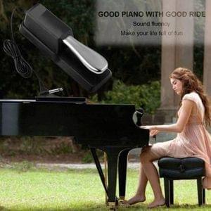 1629104032615-damper-sustain-pedal-for-casio-keyboard-techtest-original-imafgrz7u5qbg7d4.jpeg